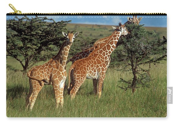 Reticulated Giraffes Eating From Tree Carry-all Pouch