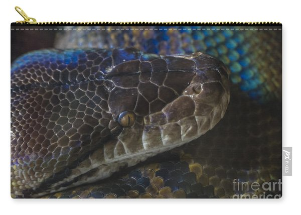 Reticulated Python With Rainbow Scales Carry-all Pouch