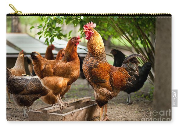 Rhode Island Red Chickens And Wooden Feeder  Carry-all Pouch