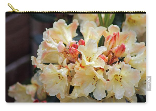 Rhododendron Nancy Evans Carry-all Pouch
