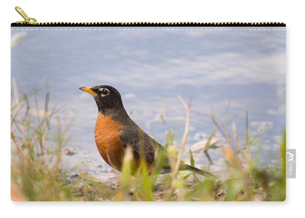 Robin Viewing Surroundings Carry-all Pouch