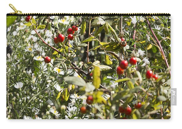 Rose Hips And Asters In A Blaze Of Color Carry-all Pouch