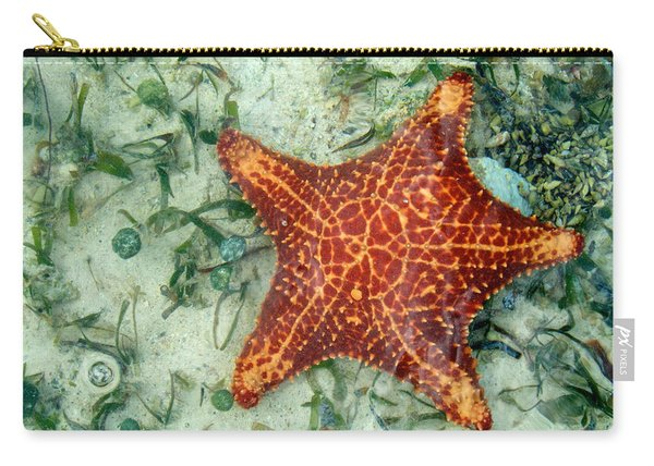 Carry-all Pouch featuring the photograph Running Starfish by Mary Lee Dereske