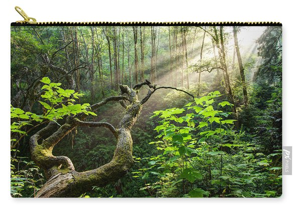 Carry-all Pouch featuring the photograph Sacred Grove by Dustin  LeFevre
