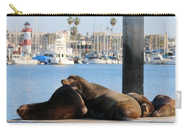 Sailing Dreams  Carry-all Pouch