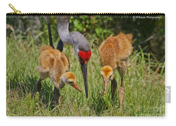 Sandhill Crane Family Feeding Carry-all Pouch