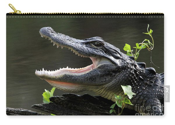 Say Aah - American Alligator Carry-all Pouch