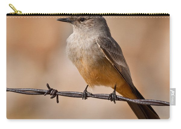 Say's Phoebe On A Barbed Wire Carry-all Pouch