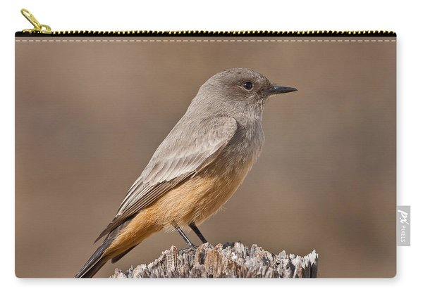 Say's Phoebe On A Fence Post Carry-all Pouch