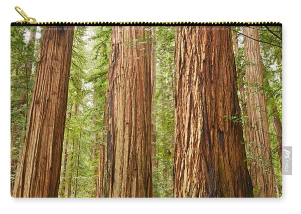 Scale - The Beautiful And Massive Giant Redwoods Sequoia Sempervirens In Redwood National Park. Carry-all Pouch