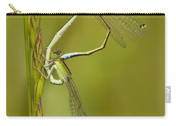 Scarce Blue-tailed Damselfly Pair Carry-all Pouch