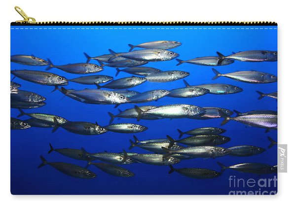 School Of Pacific Sardines 5d24927 Carry-all Pouch