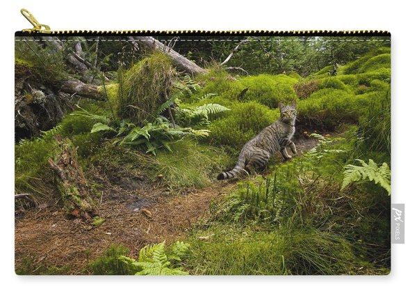 Scottish Wildcat And Domestic Cat Carry-all Pouch