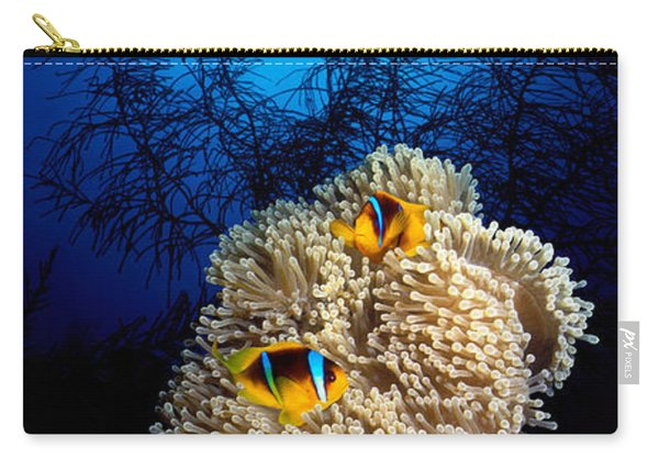 Sea Anemone And Allards Anemonefish Carry-all Pouch