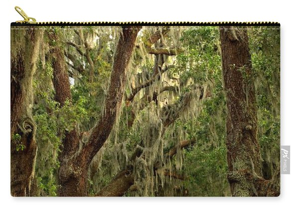 Sea Island Oaks Portrait Carry-all Pouch