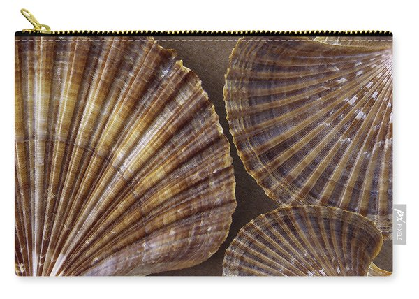 Seashells Spectacular No 7 Carry-all Pouch