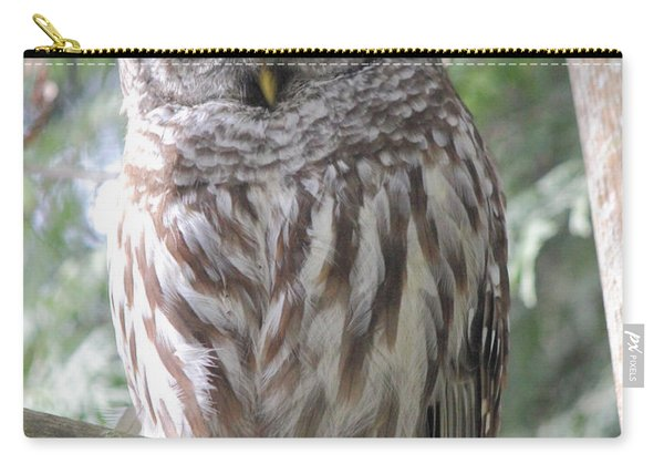Security Cam Carry-all Pouch