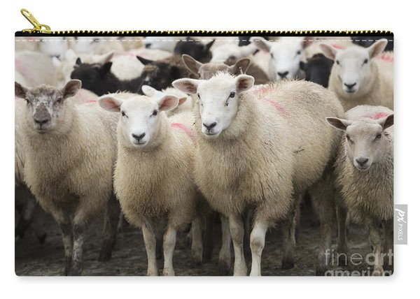 Sheep In A Farm Yard Carry-all Pouch