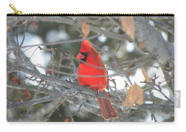 Shining Bright Red Carry-all Pouch