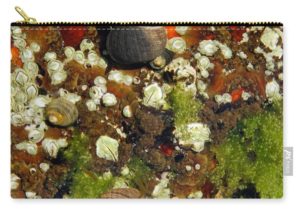 Shoals Tide Pool Carry-all Pouch
