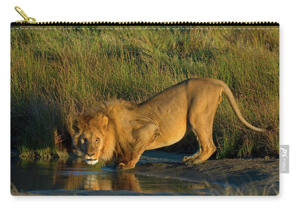 Side Profile Of A Lion Drinking Water Carry-all Pouch