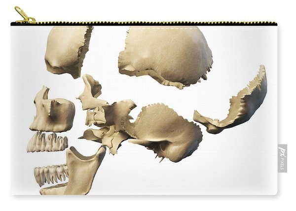 Side View Of Human Skull With Parts Carry-all Pouch