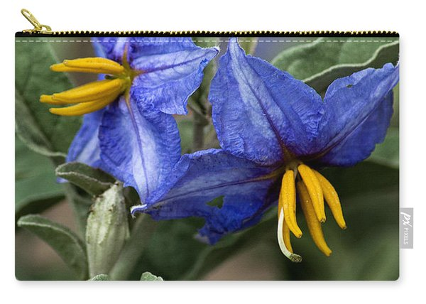 Carry-all Pouch featuring the photograph Silver Leaf Blooms by Mae Wertz