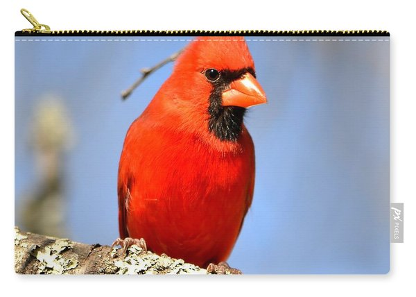Simply Red Carry-all Pouch