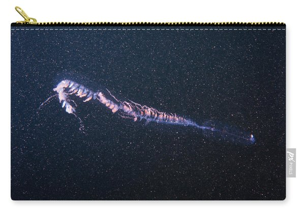 Siphonophore Carry-all Pouch