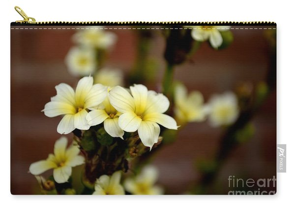 Carry-all Pouch featuring the photograph Sisyrinchium Striatum by Scott Lyons