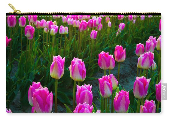 Skagit Valley Dawn Carry-all Pouch