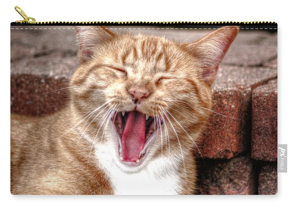 Carry-all Pouch featuring the photograph Skippy Laughing by Michael Colgate
