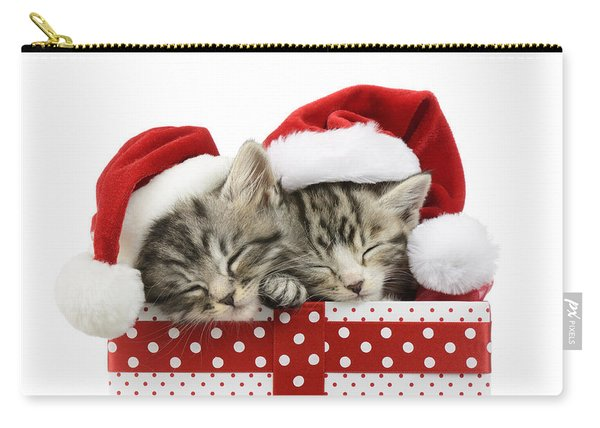 Sleeping Kittens In Presents Carry-all Pouch