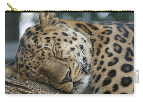 Sleeping Leopard Carry-all Pouch
