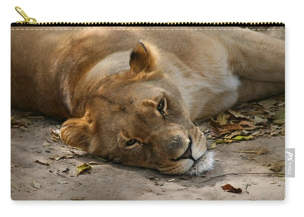 Sleepy Lioness Carry-all Pouch
