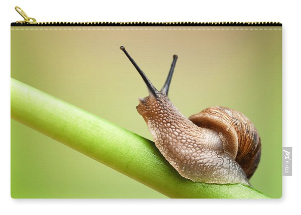 Snail On Green Stem Carry-all Pouch