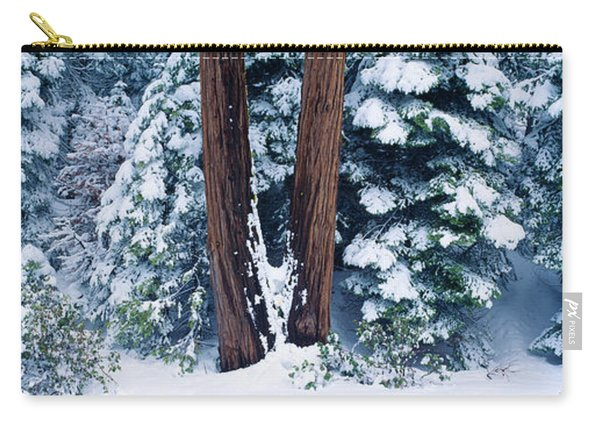 Snowy Forest In The Sierra Nevada Carry-all Pouch