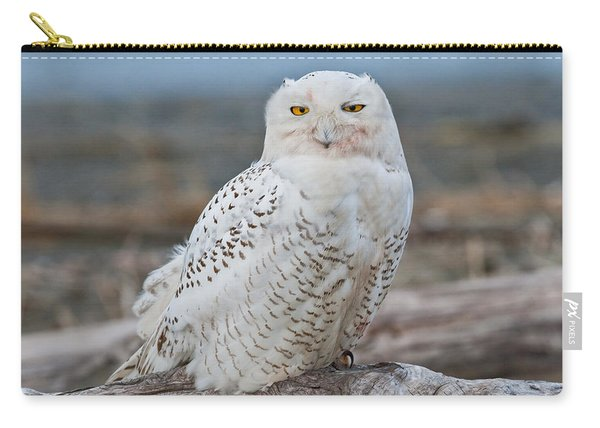 Snowy Owl Watching From A Driftwood Perch Carry-all Pouch