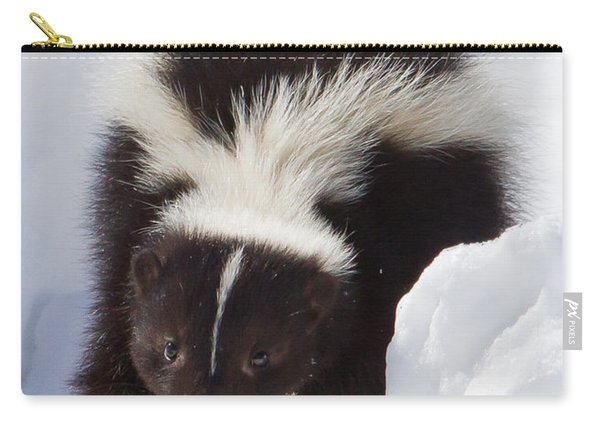 Snowy Walk Carry-all Pouch