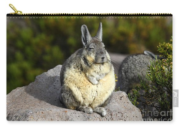Soaking Up The Sun Carry-all Pouch