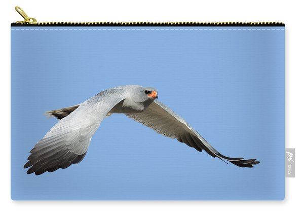 Southern Pale Chanting Goshawk In Flight Carry-all Pouch