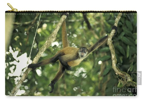 Spider Monkey In A Tree Carry-all Pouch