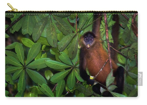 Spider Monkey Simia Paniscus On A Tree Carry-all Pouch
