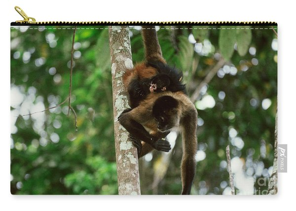 Spider Monkey With Young Carry-all Pouch