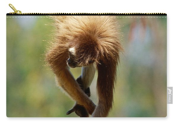 Spider Monkeys Hanging From Tail Carry-all Pouch