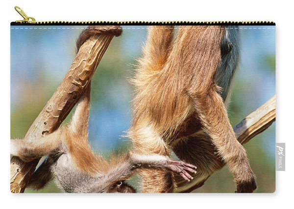 Spider Monkeys Hanging From Vines Carry-all Pouch