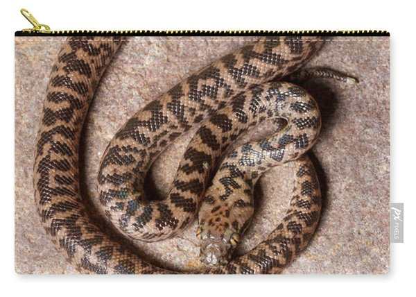 Spotted Python Antaresia Maculosa Top Carry-all Pouch
