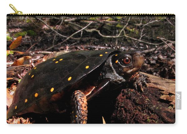 Spotted Turtle Carry-all Pouch