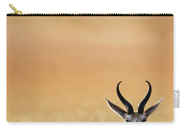 Springbok Resting On Green Desert Grass Carry-all Pouch