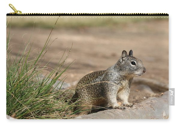 Carry-all Pouch featuring the photograph Squirrel  by Christy Pooschke